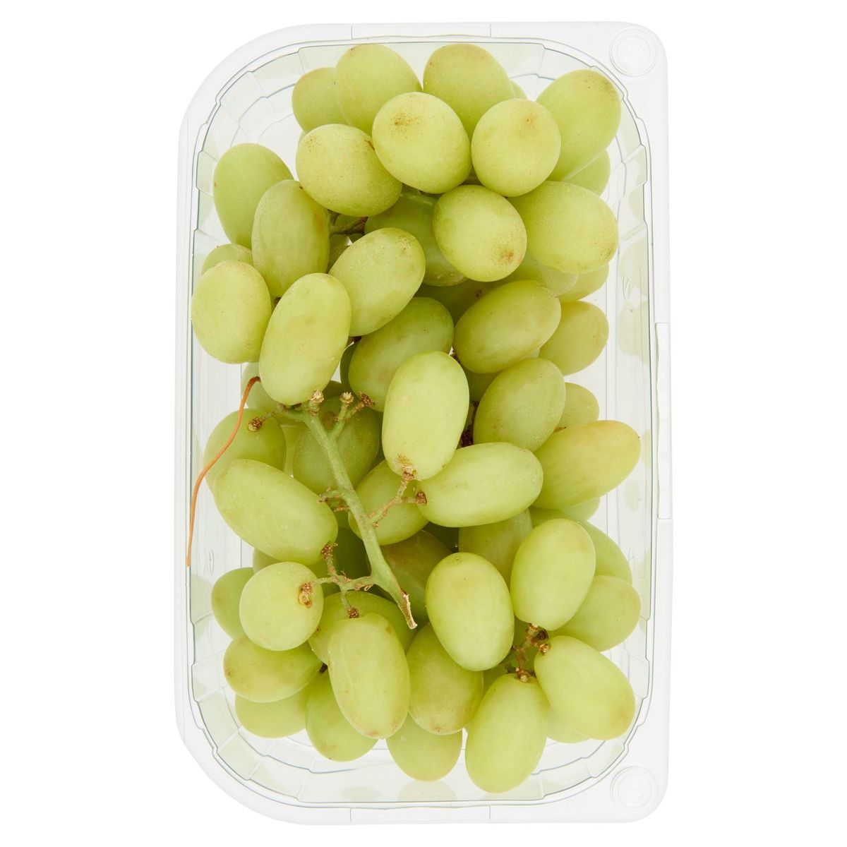 Raisins Blancs sans Pépin 500 g