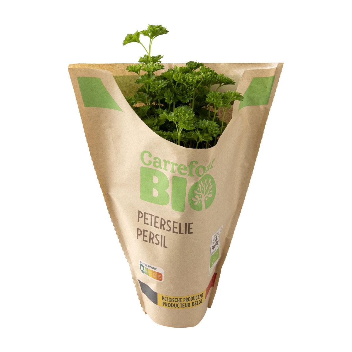 Carrefour BIO Persil en pot