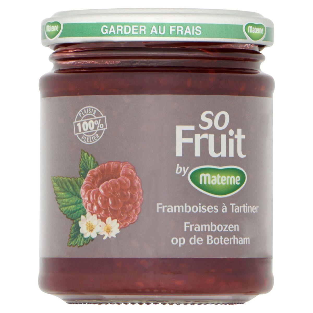 Materne So Fruit Framboises à Tartiner 215 g