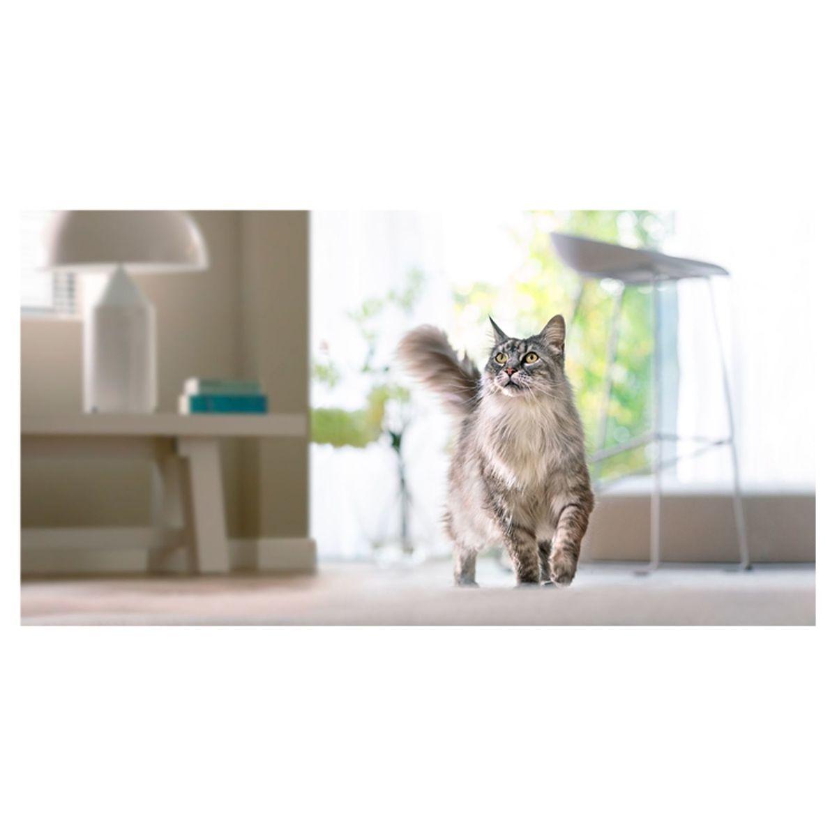 PURINA ONE Hondenvoer Mini <10 kg Weight Control 1.5 kg