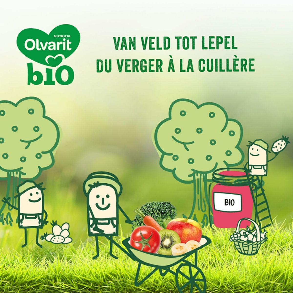 Olvarit Bio fruitpap babypuree Appel pruim  4 maanden 2x125g
