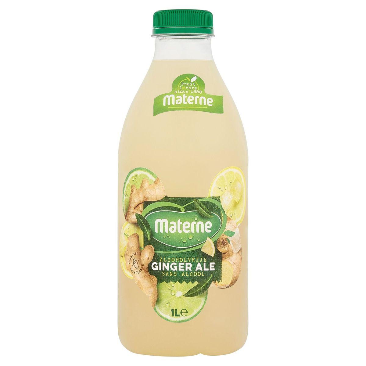 Materne Ginger Ale Sans Alcool 1 L