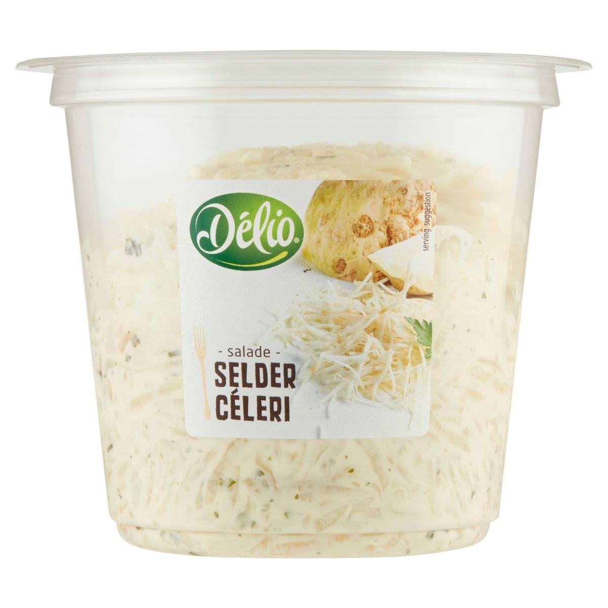 Délio Salade Céleri 400 g