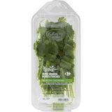 Carrefour Koriander 15 g