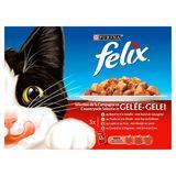 FELIX Alimentation Chat Sélection de Viandes en Gelée 12 x 100 g