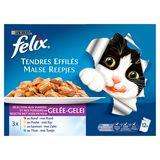 FELIX Tendres Effiles aux Viandes et Poissons en Gelée 12 x 100 g