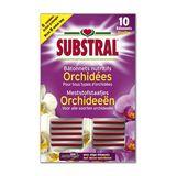 Substral Bâtonnets nutritifs pour Orchidées
