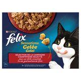 FELIX Sensations Kattenvoeding Vlees Selectie in Gelei 12 x 100 g