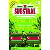 Substral Bâtonnets nutritifs pour Plantes vertes