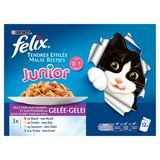 FELIX Nourriture Chat Junior Tendres Effiles 12 x 100 g