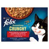 FELIX Nourriture Chat Sensations Crunchy 10 x 140 g