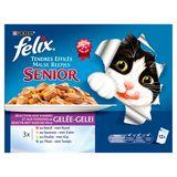 FELIX Senior Alimentation Chat Tendres Effiles 12 x 100 g