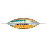 FRISKIES Friandise Chien Filetti Poulet, Bœuf & Porc 70 g