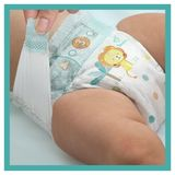 Pampers Baby-Dry Couches Taille 5 (11-16kg) - 24Couches