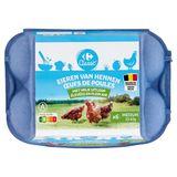 Carrefour Eieren van Hennen met Vrije Uitloop Medium 6 Stuks