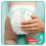 Pampers Baby-Dry Pants T5, 96 Couches-Culottes, Faciles À Enfiler