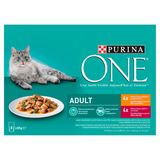 PURINA ONE Wet Kattenvoeding Kip of Rundvlees in Gelei 8 x 85 g