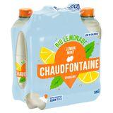 Chaudfontaine Bio Lemonade Lemon Mint Pet 500Ml X 6
